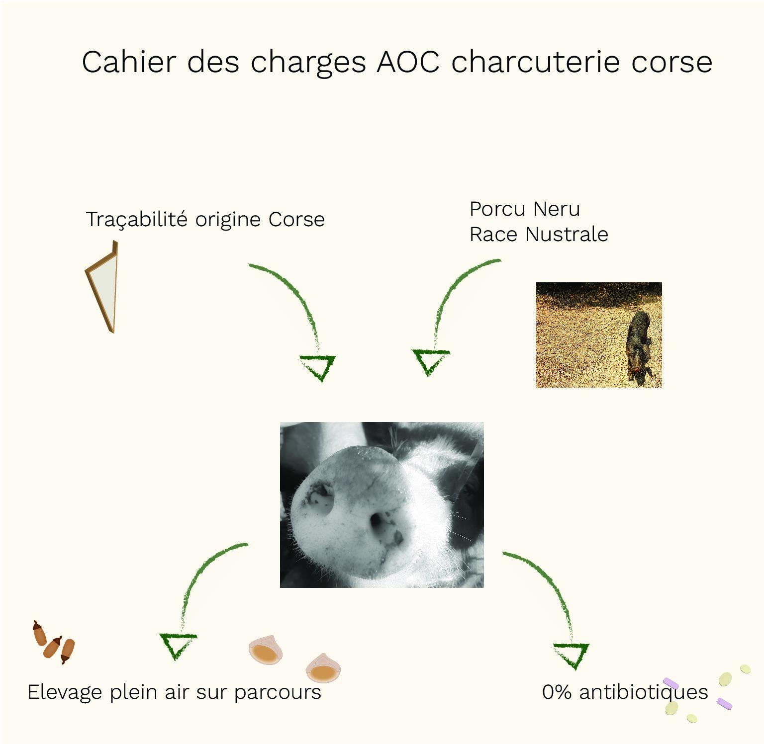 ETHICONSO : AOC/AOP charcuterie Corse
